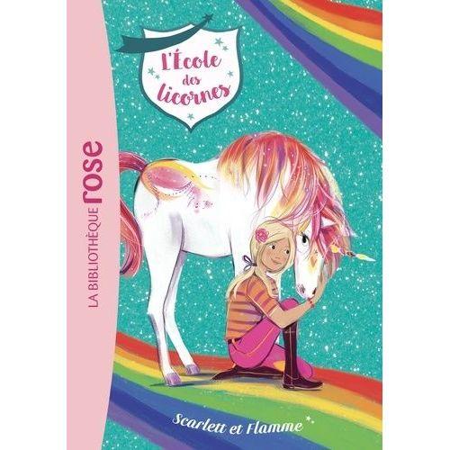 La Bibliotheque Rose Pas Cher Ou D Occasion Sur Rakuten
