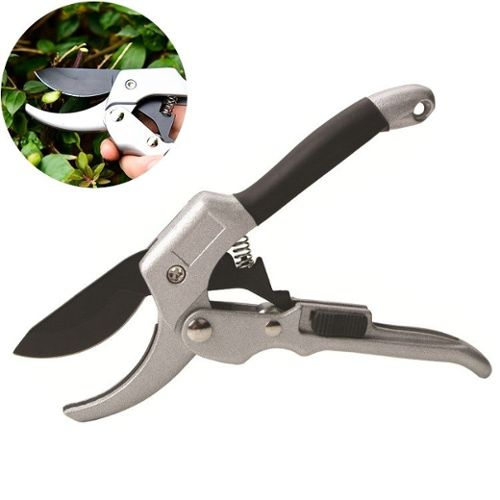 Poules Et Jardin Pas Cher Ou D Occasion Sur Rakuten