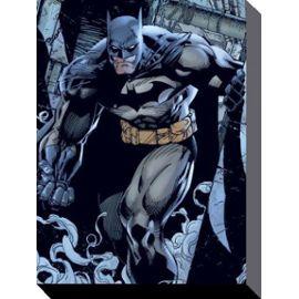 Image toile Batman