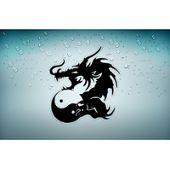Autocollant sticker voiture moto tuning dragon tribal macbook vinyl macbook r3