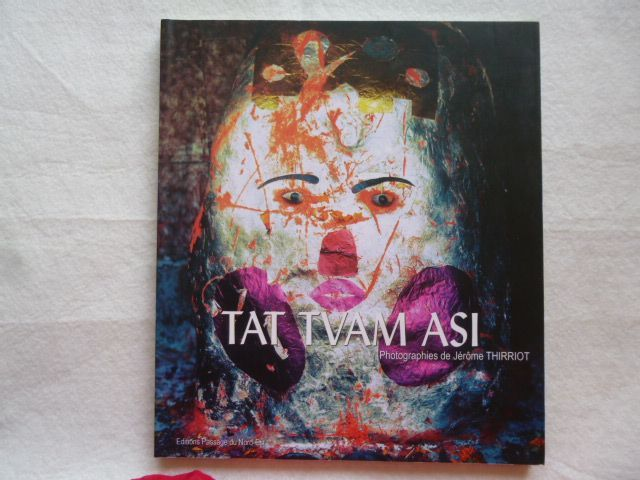 Tat Tvam Asi - Cela c'est toi. Jérôme Thirriot. 2009.