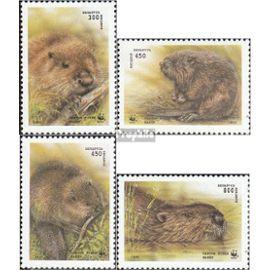 Weißrussland 96-99 (complète.Edition.) neuf avec gomme originale 1995 castor D¿autres mammifères