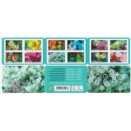 """CARNET 12 TIMBRES """"ECLOSION"""""""