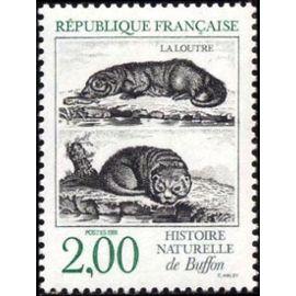 Histoire naturelle La loutre