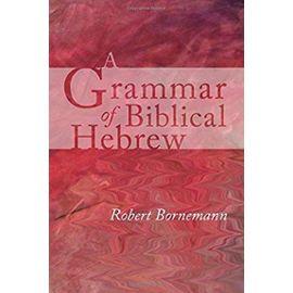 A Grammar of Biblical Hebrew - Robert Bornemann
