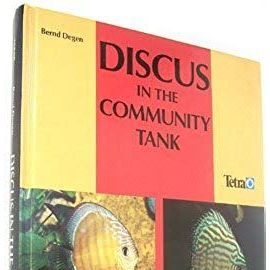 Discus in the Community Tank - Bernd Degen