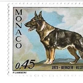 Exposition Canine Internationale 1973 - Berger allemand (0,45)