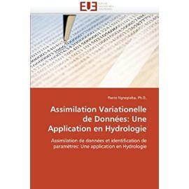 Assimilation Variationelle de Données: Une Application en Hydrologie: Assimilation de données et identification de paramètres: Une application en Hydrologie (Omn.Univ.Europ.) - Ph.D., Pierre Ngnepieba