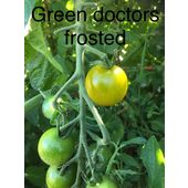 Bio Et Reproductible Graine Tomate Cerise Green Doctors Frosted