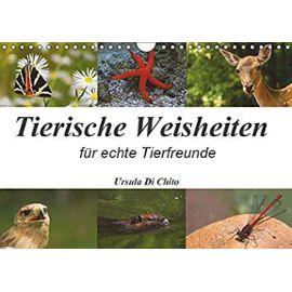 Tierische Weisheiten (Wandkalender 2019 DIN A4 quer): Ein Kalender mit Zitaten für Tierfreunde (Monatskalender, 14 Seiten ) - Unknown