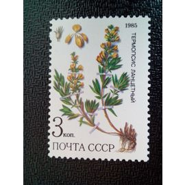 timbre RUSSIE / URSS YT 5233 Thermopsis lanceolata 1985 ( 080304 )