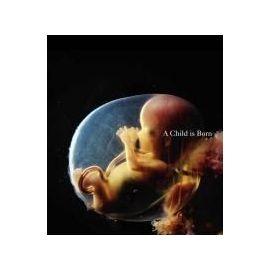 A Child is Born - Nilsson Lennart