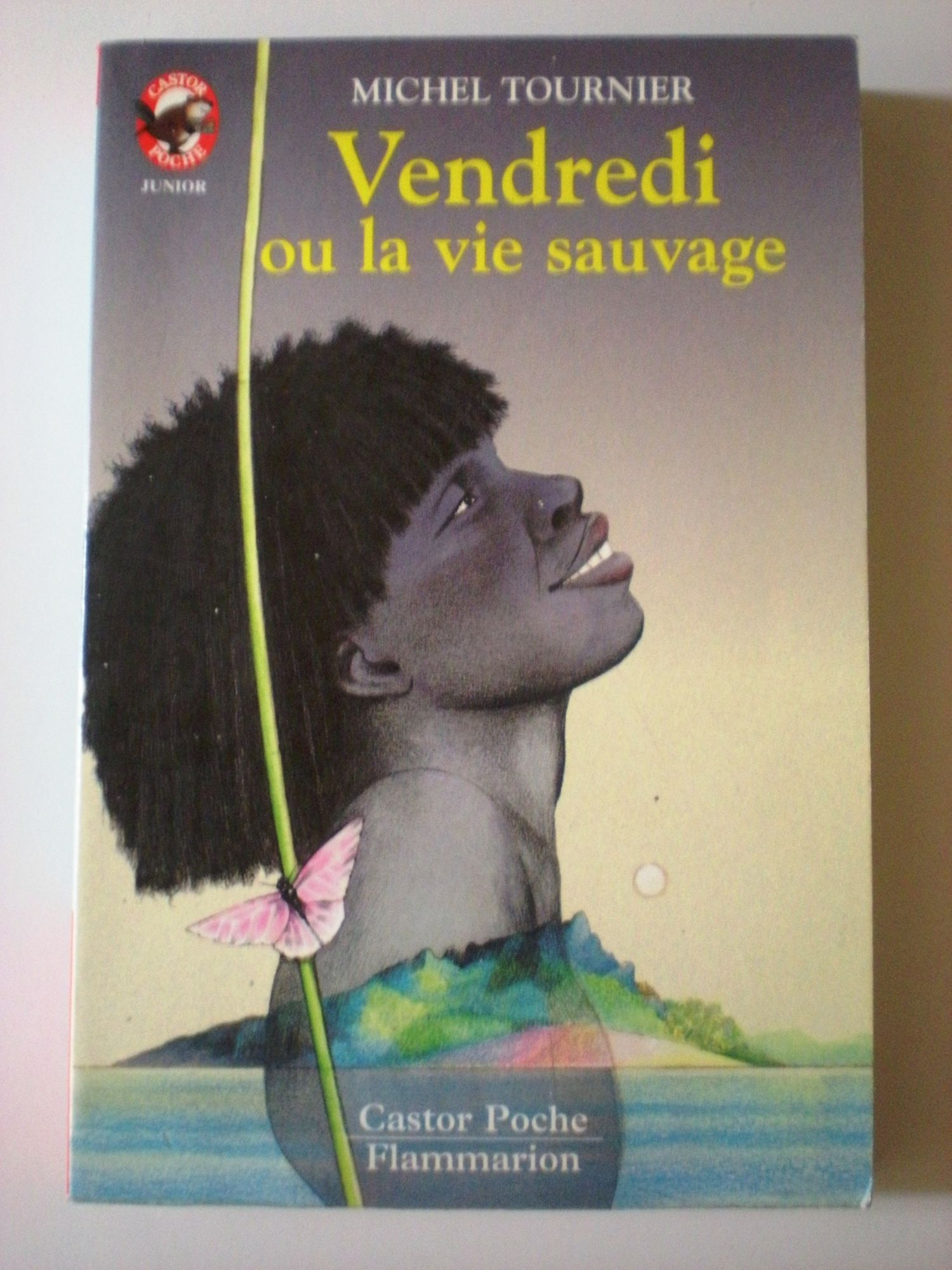 Vendredi ou la vie sauvage - Flammarion - 08/01/1992