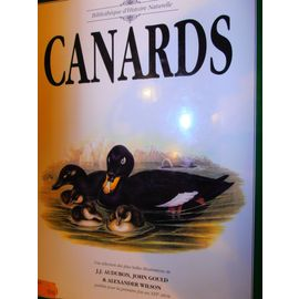 canards - J;J;Audubon