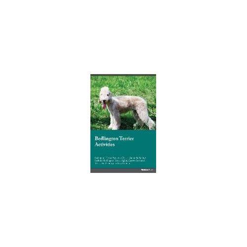 Pin Brooch Pin Gold-Plated Dog Bedlington terrier P011