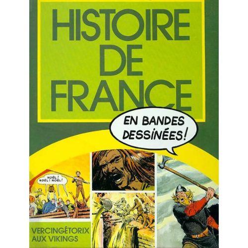 Histoire De France En Bd T 1 De Vercingetorix Aux Vikings