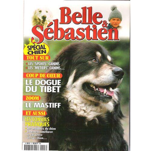 Belle Sébastien 3 Spécial Chien Dogue Du Tibet Rakuten
