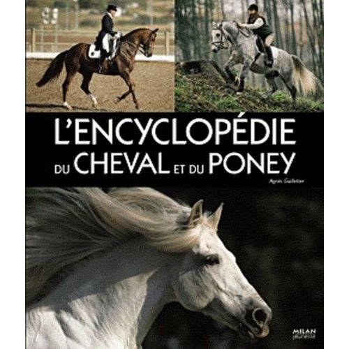 L Encyclopedie Du Cheval Et Du Poney Enfant Jeunesse Rakuten