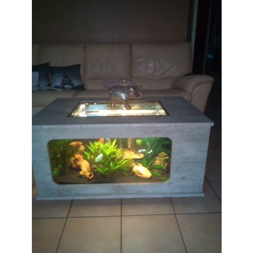 Aquarium Table Basse 200 Litres Animalerie Rakuten