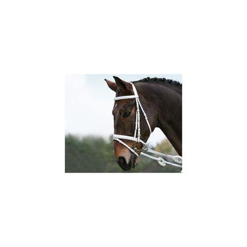 Anti-Dérapant éponge brosse-Equine ou pet