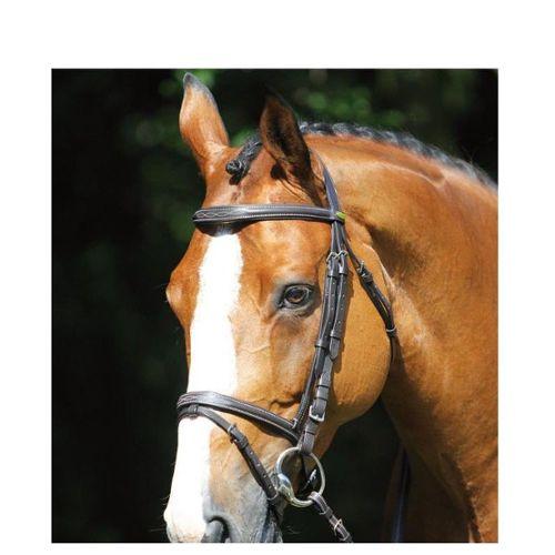 Crop Doublure en cuir souple Poignée droite en cuir Flogger Horse Whip Noir