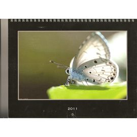 Calendrier Vista Print.Calendrier Vistaprint 2011