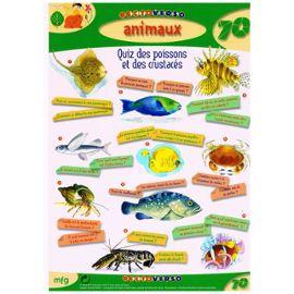 Animaux : Quiz des animaux de la forêt - MFG Education