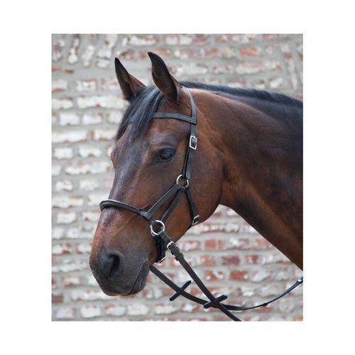 Weatherbeeta 600D//Mesh exercice Feuille Imperméable Respirant l/'air Equine