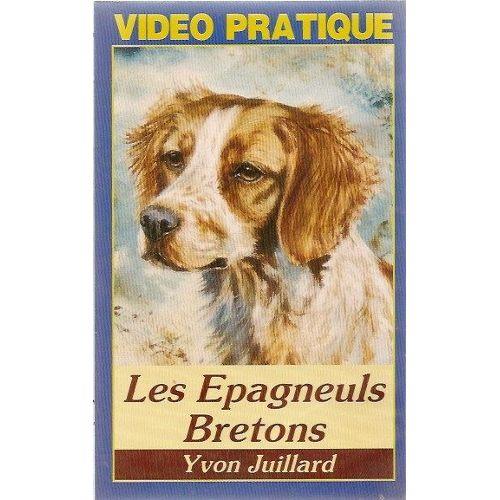 """Eaks ® T-Shirt Hommes /""""Doberman/"""" Blanc amoureux des animaux chiens amis club Chiens Sport"""