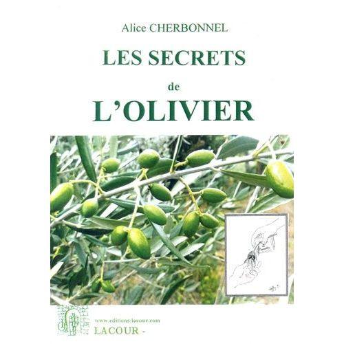 Les Secrets De L Olivier L Olive Pratique Cueillir Preparer