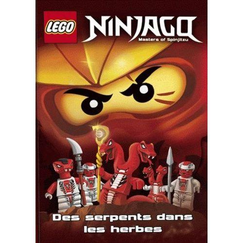 Les Des Dans Lego Ninjago Serpents Fourrés SzUqMVp